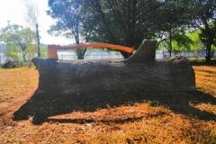 Training axe and log